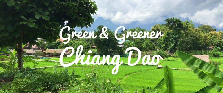 Green and Greener Chiang Dao