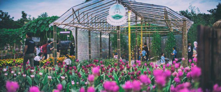 8th Northern Thailand Agricultural Fair งานเกษตรภาคเหนือ